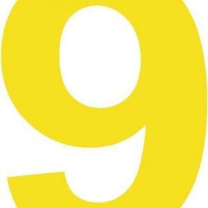 yellow windscreeen number